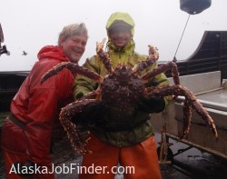 King Crab Deckhands Posing for Photo with Huge King Crab they Caught