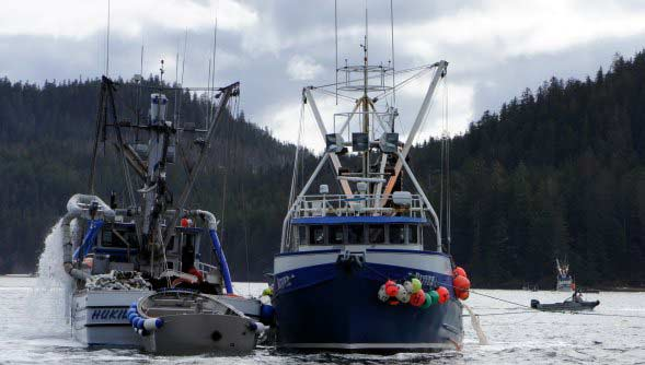 Alaska Salmon Purse Seiner Photo