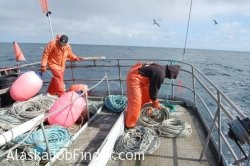 Deckhands Setting Buoy Line on Alaska Longliner