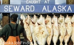 Alaska Halibut Charter Fishing Photo