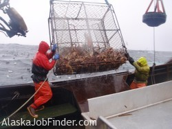 Alaska King Crab Deckhands photo